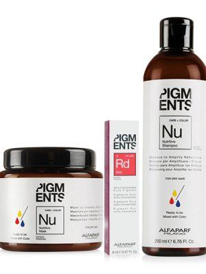 Combo dưỡng màu cho tóc nhuộm đỏ và tóc khô Alfaparf Pigments Nutritive Red