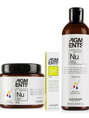 Combo dưỡng màu cho tóc nhuộm vàng và tóc khô Alfaparf Nutritive Pigments Gold